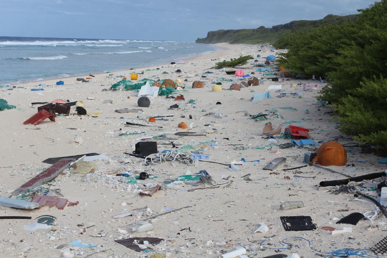 East Beach, Henderson Island