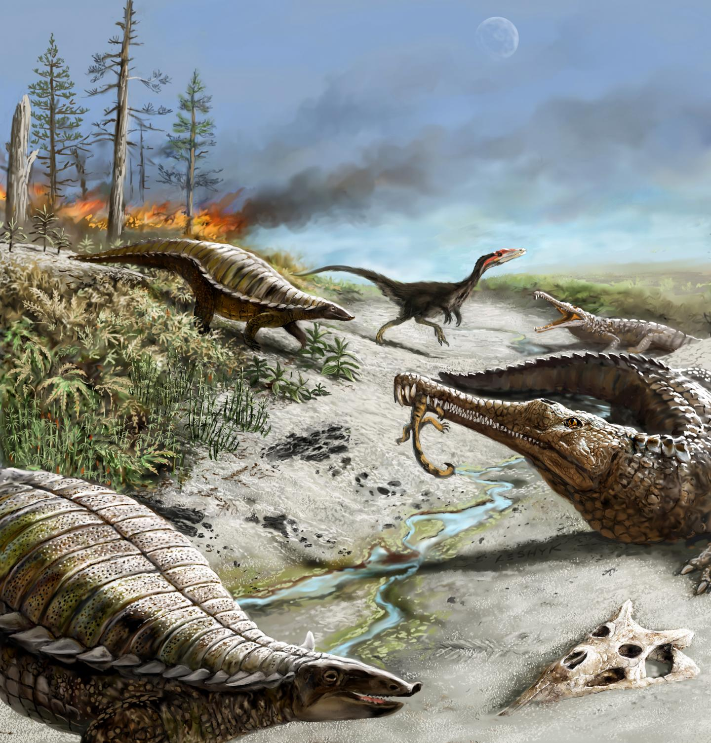Dinosaurs Were Small and Rare in the Tropics