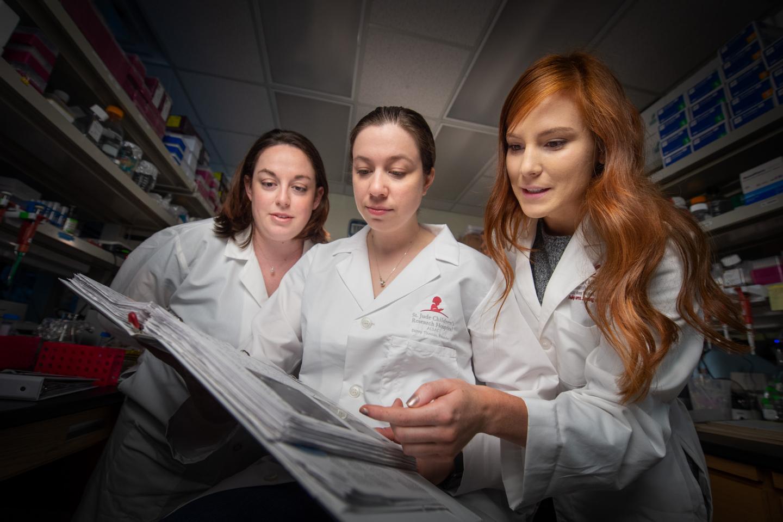 Dyer Lab Builds Model