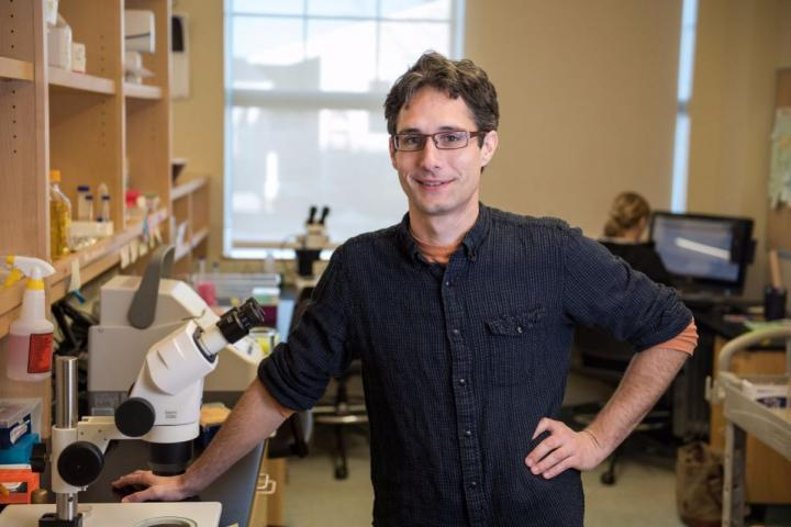 Jarod A. Rollins, MDI Biological Laboratory