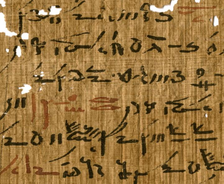 Detail of a Medical Treatise from the Tebtunis Temple Library