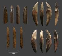 Fa Hien Bone Tools