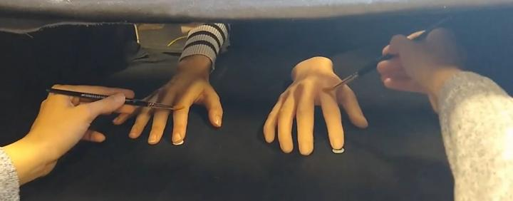 Rubber Hand Illusion