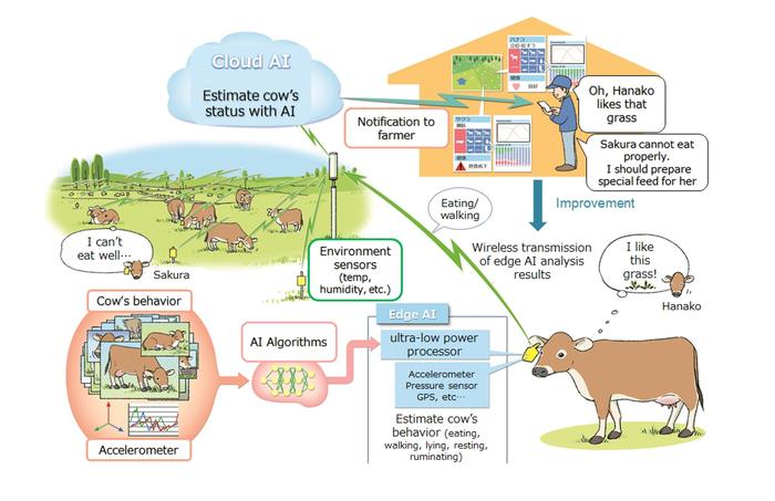 Figure 1: Future vision of livestock industry