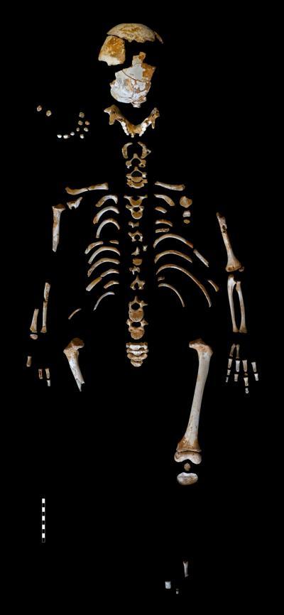 The Neanderthal Boy