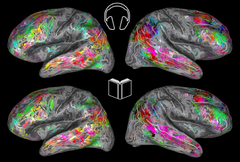 Semantic Brain Maps