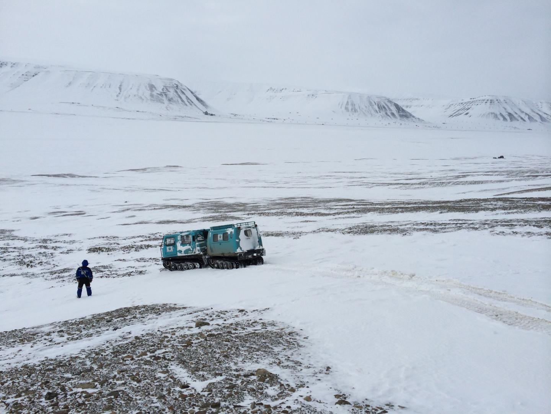 Svalbard seismic 1