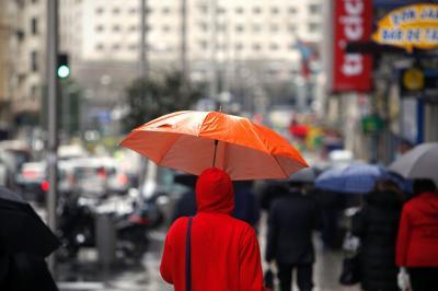 Rainfall Trends