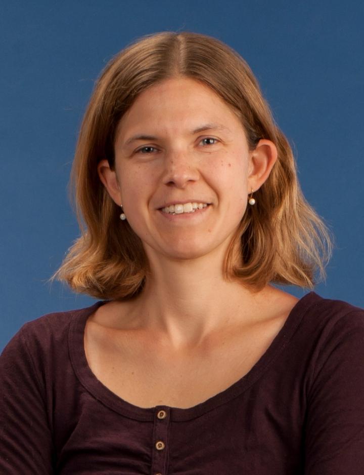 Karen Troy, Worcester Polytechnic Institute