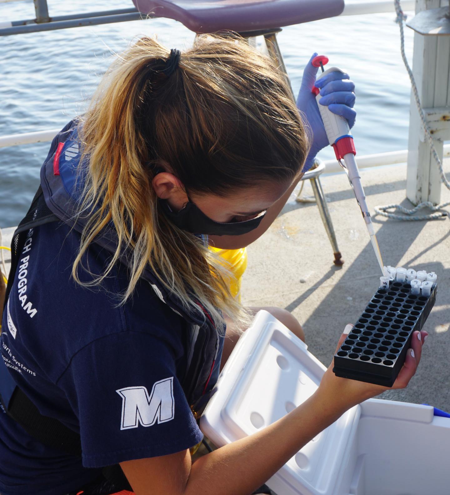 Storing Seawater / eDNA