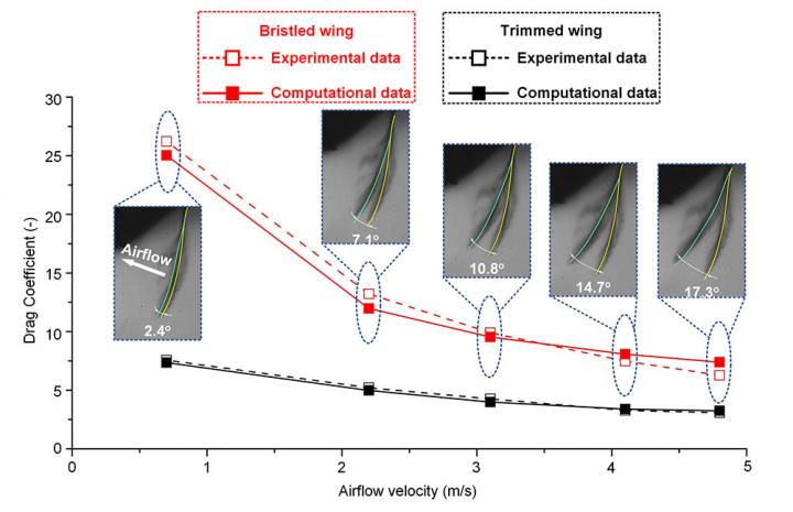 Comparison of the Drag Coefficient between the Experimental Measurement and Computational Analysis