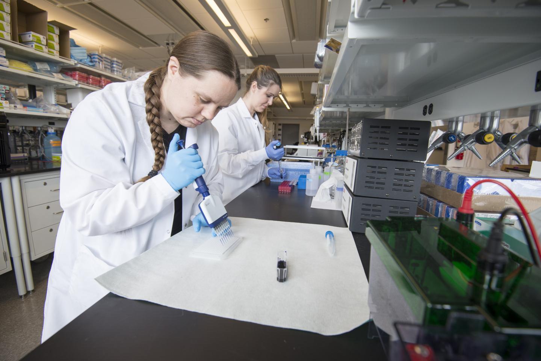Hannah Schoch and Ashley Ingiosi in Peixoto Lab