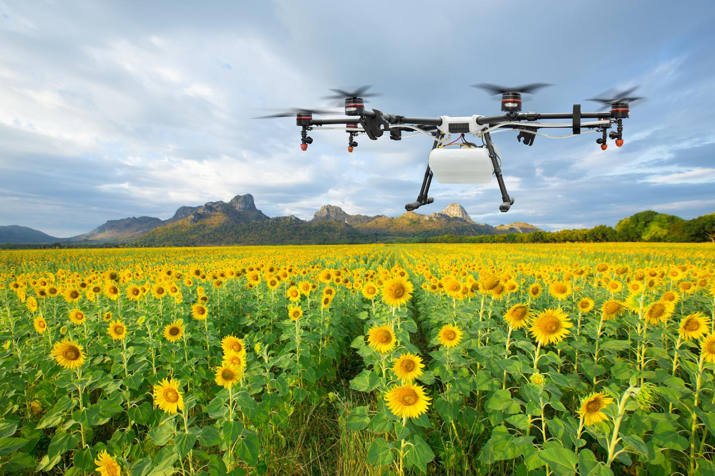 UAVs in Agriculture