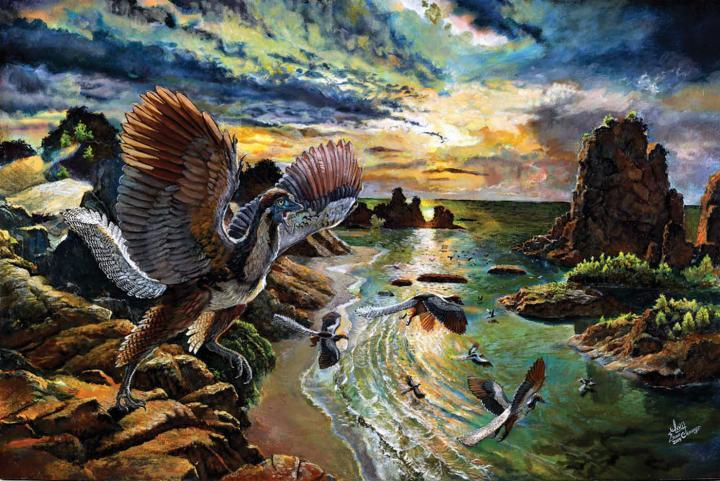 <em>Archaeopteryx albersdoerferi</em>