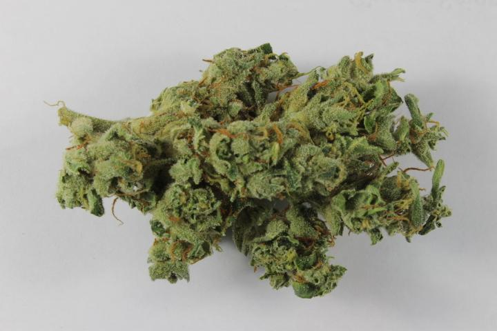Legalizing Marijuana and the New Science of Weed (Video)