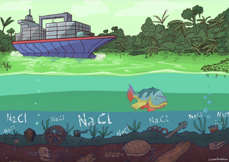 Gatun Lake Illustration