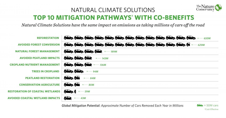 Top 10 Mitigation Pathways with Co-benefits