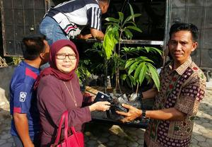 Person Receiving Seedling