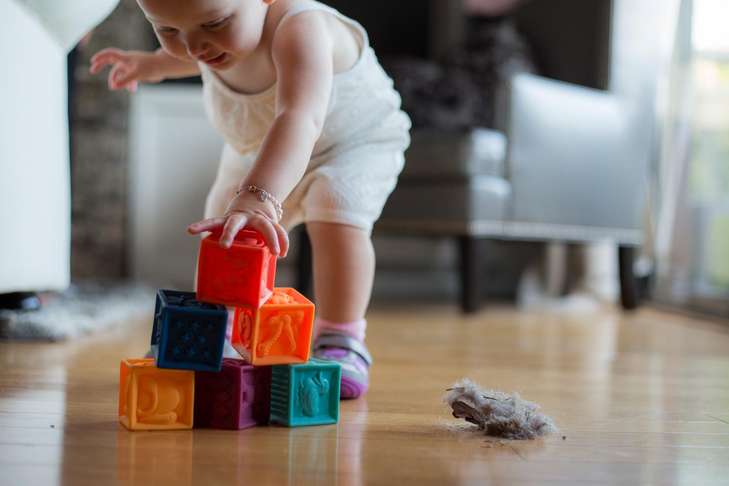 Chemicals in Household Dust
