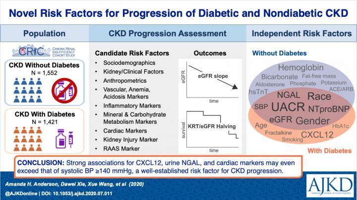 Novel Risk Factors for Progression of Diabetic and Nondiabetic CKD