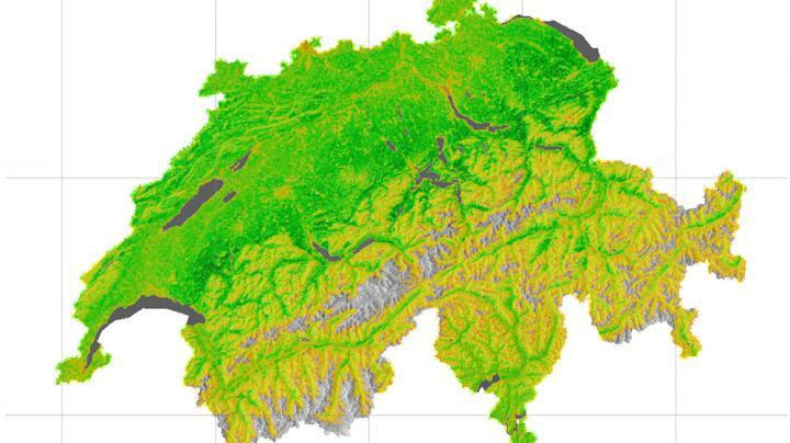 Biomass Production in Switzerland