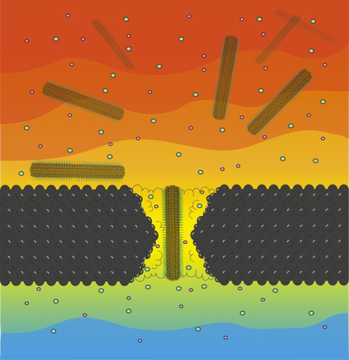 Nanopore Translocation Illustration