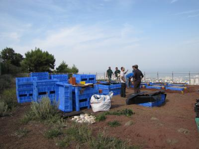 First Green Roofs Ecology research Center in Israel