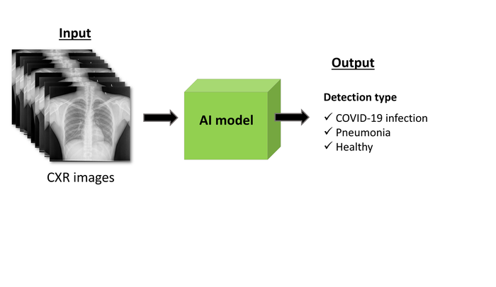 Detecting COVID-19 by Using Artificial Intelligence Models of Lung Images