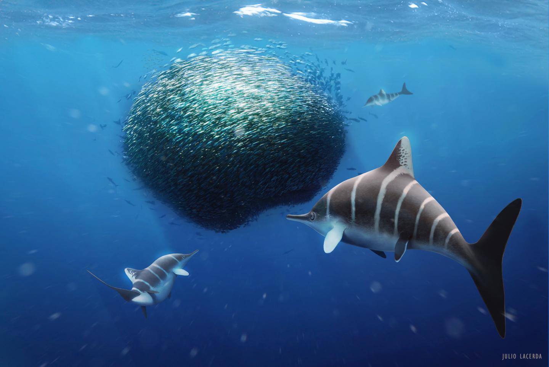 Artwork with 'Bait Ball' Ichthyosaur