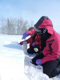 Sampling Snow