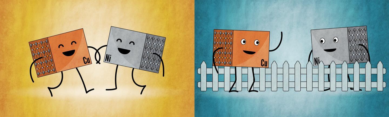 Nickelates and cuprates: close kin or distant neighbors?