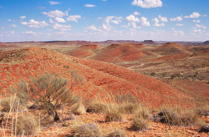 Jeerinah Formation in Western Australia -- For Paper