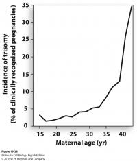 Graph: Maternal Age vs. Cell Division Error