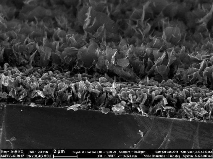 Side View Microphotograph