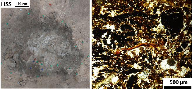Modern Analysis of Ancient Hearths Reveals Neanderthal Settlement Patterns