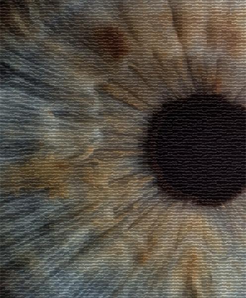 Optical Coherence Tomographs