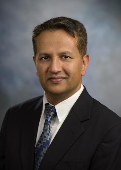 Mukesh Dhamala, Georgia State University