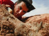 Paul Sereno Excavating BoarCroc