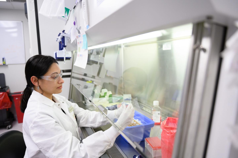 Intellia Therapeutics scientist in the lab