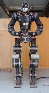 WALK-MAN Humanoid Robot as a Robotic Avatar