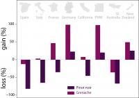 Pinot Noir and Grenache Gains and Losses under 2 Degrees of Warming