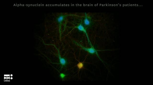 Novel Protein Interactions Explain Memory Deficits in Parkinson's Disease