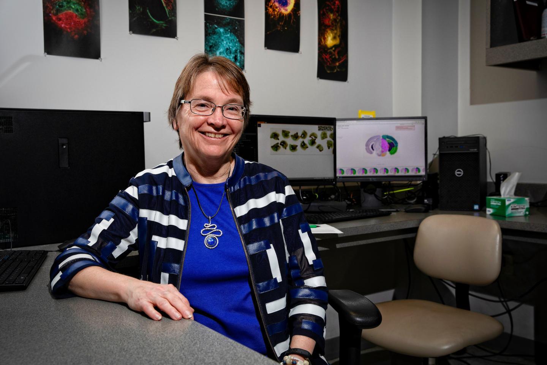 SBCoA director Linda J. Van Eldik, Ph.D. Mark Cornelison | UKphoto