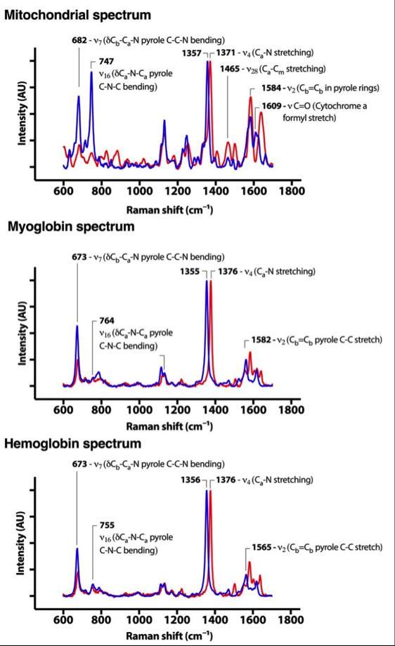 Shifting light spectra