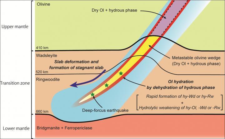 Slab deformation and formation of a stagnant slab in a wet descending slab