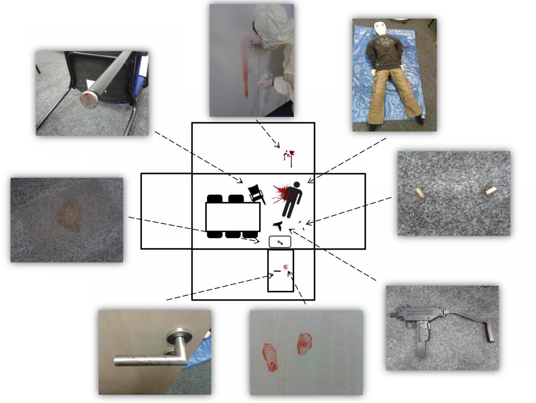 CSI Effect Experiment