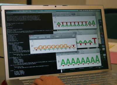 UC San Diego Undergraduates Forge New Area of Bioinformatics (1 of 2)