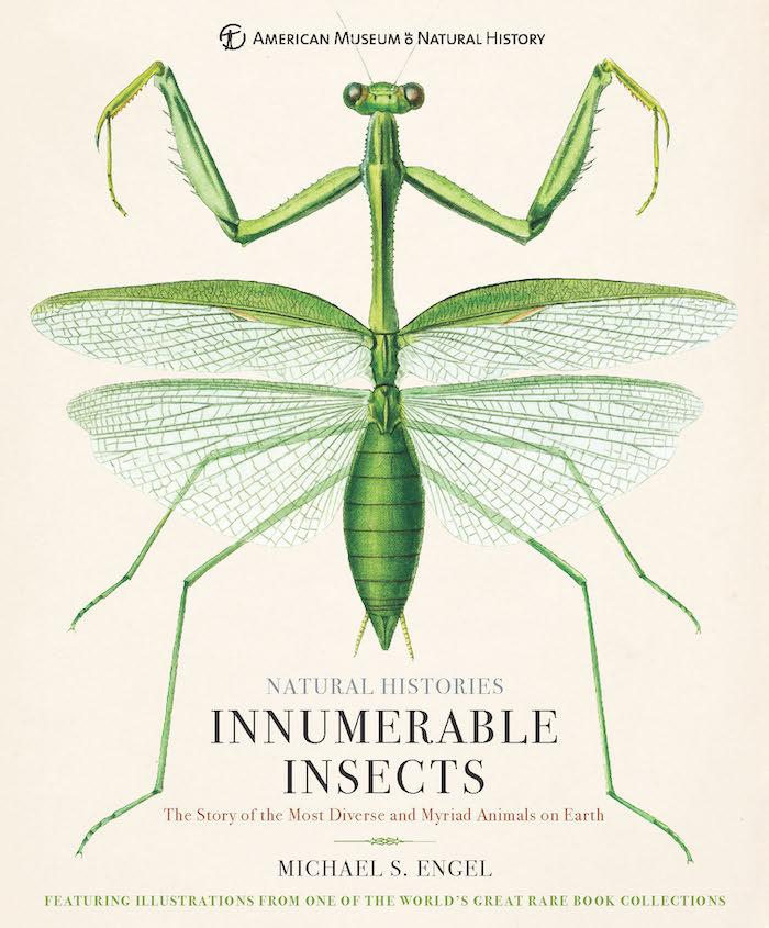 Cover of 'Innumerable Insects'