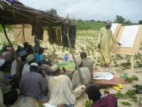 Development Aid Via Cell Phone Animations