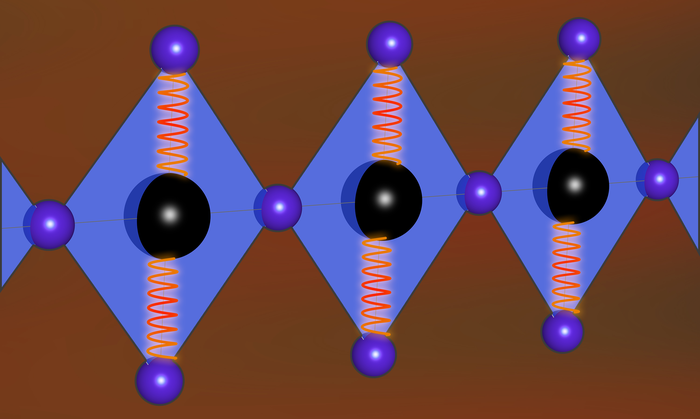 Vibrations interact with a 1D cuprate chain